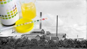 Still using urine drug testing for your Queensland workplace?