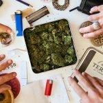 Victoria makes drug testing headlines