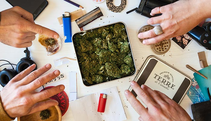 What would it mean for drug testing if cannabis was legalised in Victoria? Credit Terre di Cannabis https://unsplash.com/photos/rcjZYEHFgKE.