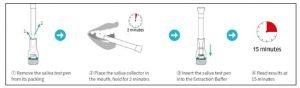 Workplace COVID-19 Rapid Antigen Saliva Testing