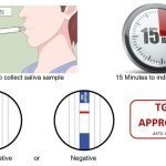 Get back to life with COVID-19 rapid testing